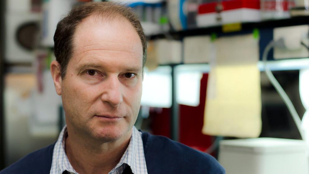 Dr.-Marcelo-Rubinstein