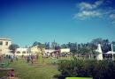 Segunda edición de la Fiesta del Picapedrero en Cerro Leones