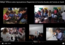 Exactas Dialoga: encuentran agroquímicos biocidas en escuelas de Tandil